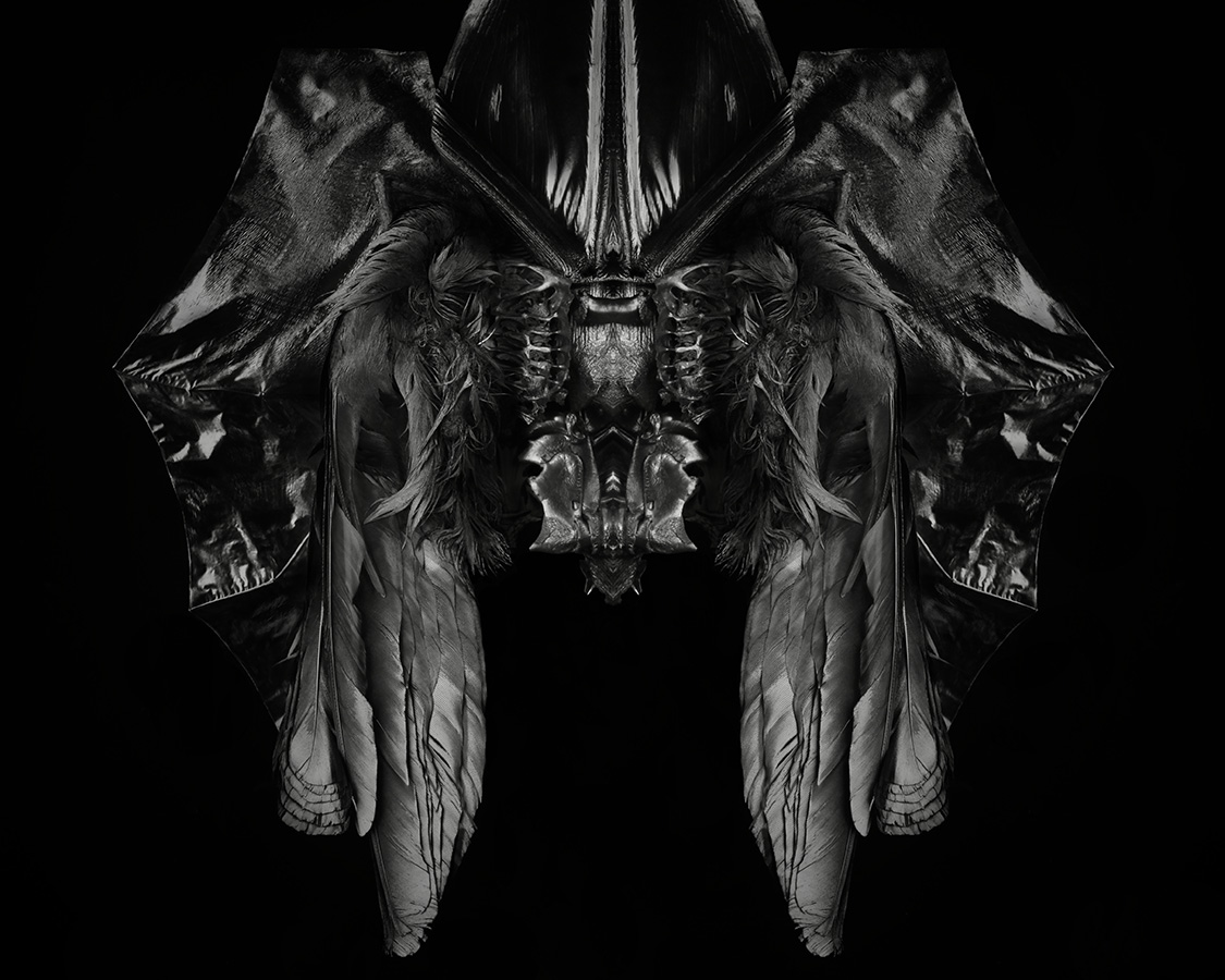 Birdlaine-14April